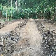 Terreno adicional para 96 plantas